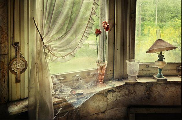 Great-still-life-photography8