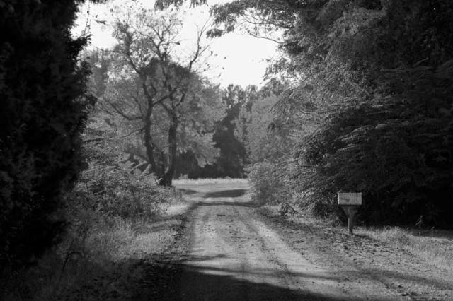 -mailbox-road
