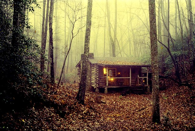 tiny-rustic-cabin