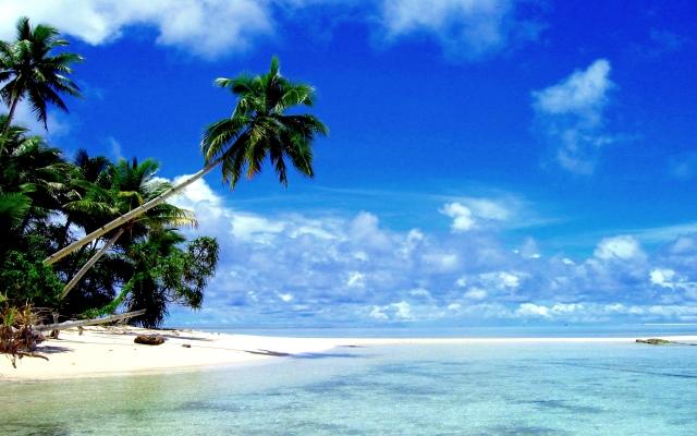 Tropical Paradise Wide Desktop Background
