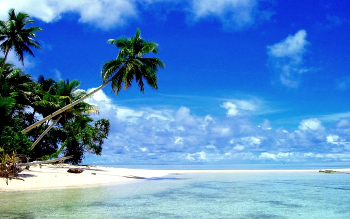 Tropical Paradise Wide Desktop Background