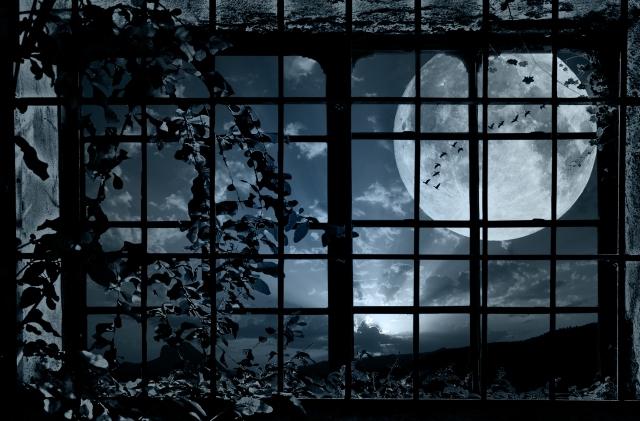 moon_window
