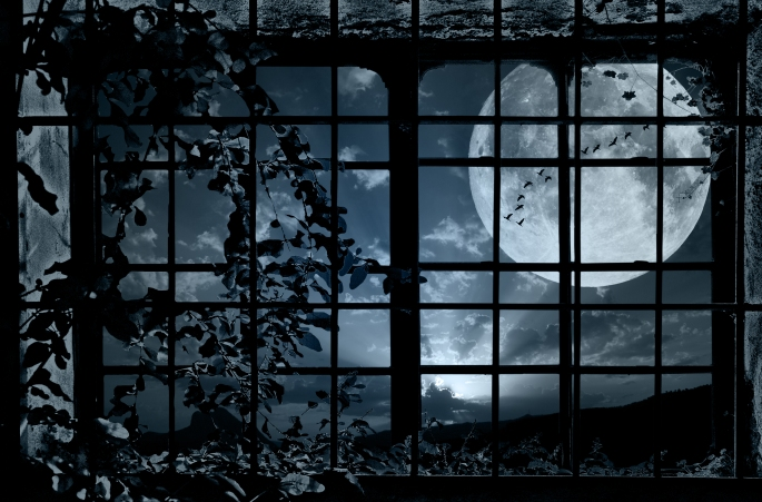 moon_window