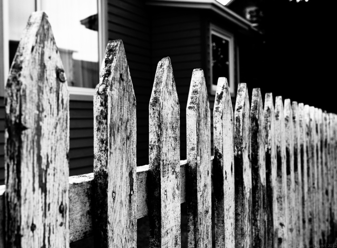 whitePicketFence-1