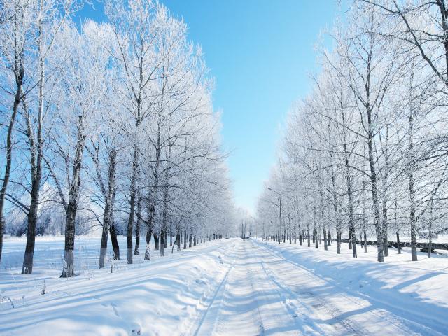 winter-4