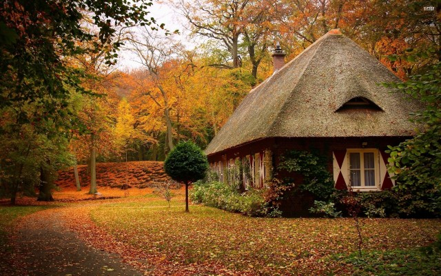 small-house-in-an-autumn-