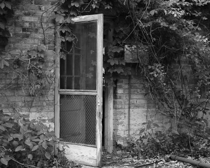 the-open-door