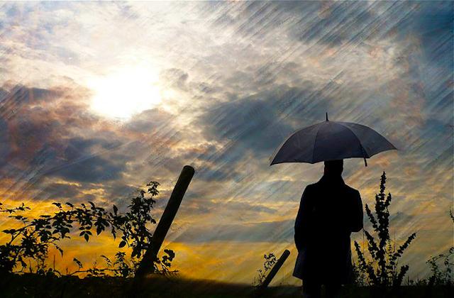Hiding-in-the-Rain