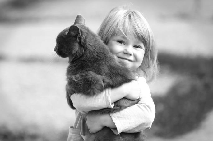 hug-cat